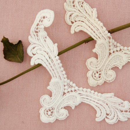 Chemical motif) Lace Wings (2 species)