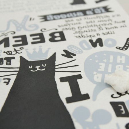 Paper transfer paper) cat land
